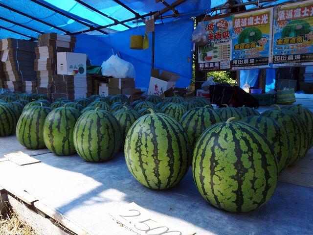 和田農場のスイカ直売所