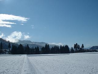 初雪が積もって真っ白になった魚沼産コシヒカリの田んぼ