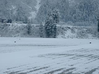 雪が積もった朝の魚沼産コシヒカリの田んぼ
