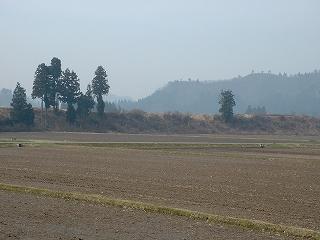 新潟県南魚沼市では八色産スイカや魚沼産コシヒカリの農作業が始まりました