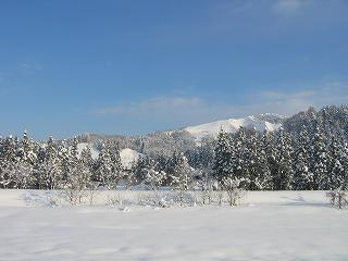 新潟県南魚沼市は久しぶりに日差しがまぶしく、雪面が輝いています