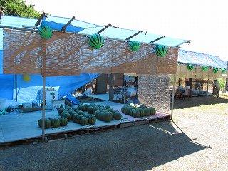 和田農場の八色産スイカ直売所