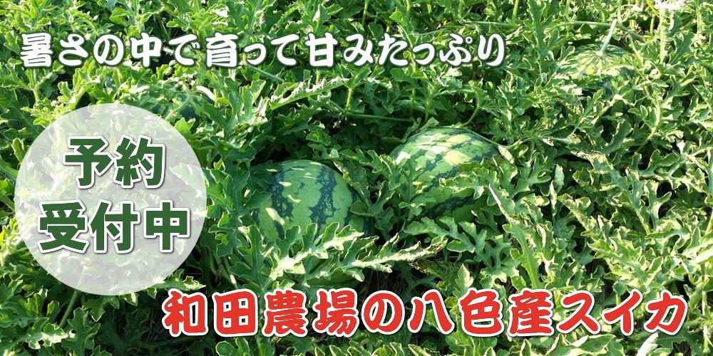和田農場 直売オンラインショップ